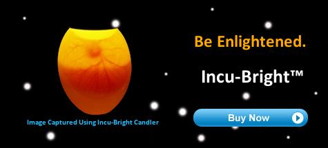 Incu-Bright™ Egg Candler Image
