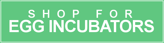 Shop for Incubators