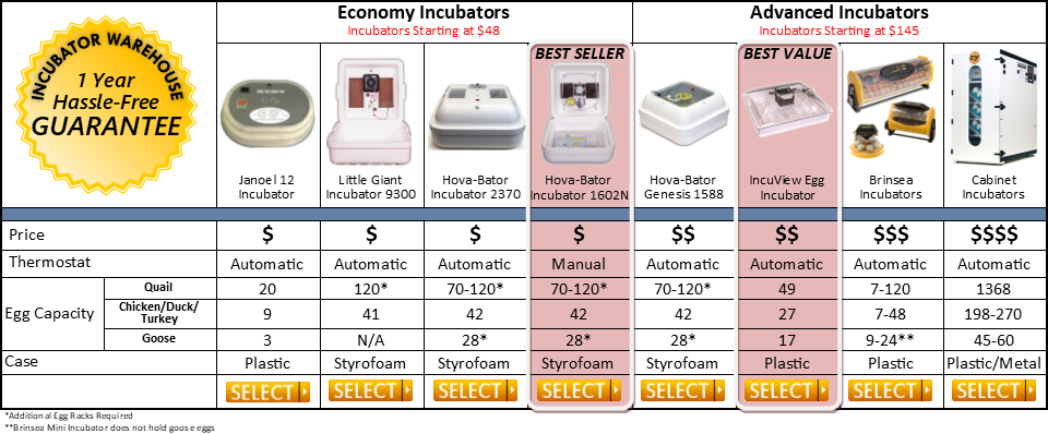 Incubator Comparison Table