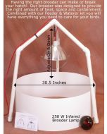 IncubatorWarehouse Brooder Kit for New Birds