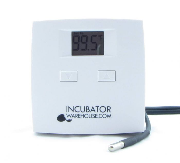 Brilliant Digital Incubator Thermostat Incubator Warehouse Wiring 101 Ferenstreekradiomeanderfmnl