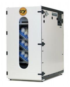 GQF 1202E Cabinet Incubator