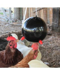 The Poultry Udder Waterer - Automatic, Clean, Hygenic Bird Waterer