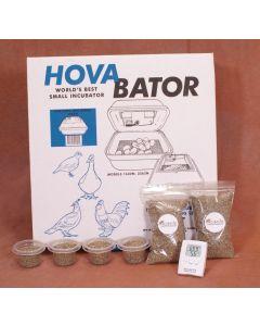 Reptile Incubator Kit
