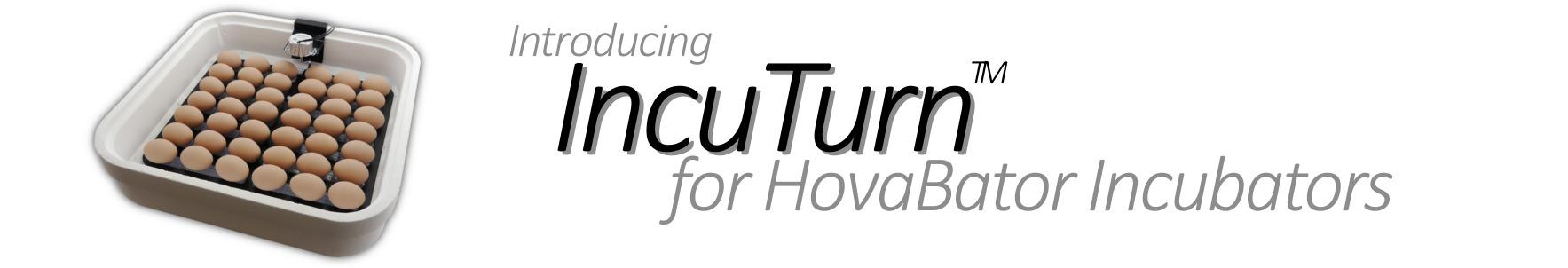 Introducing the IncuTurn